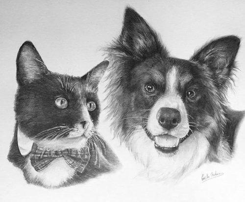 Sept 28 – Drawing Realistic Animals with Gaella Materne
