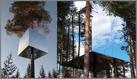 Modern Tree Hospitality