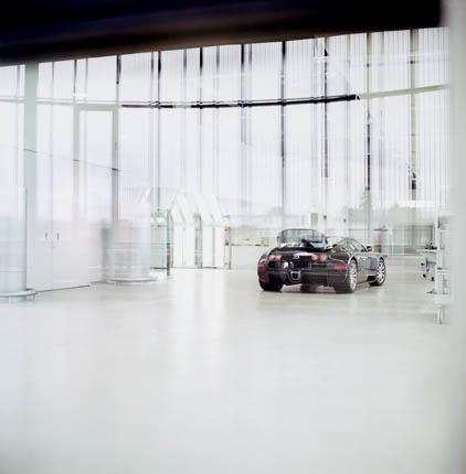 Bugatti Veyron 16.4 (71)