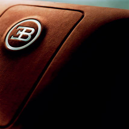 Bugatti Veyron 16.4 (51)