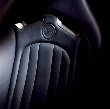 Bugatti Veyron 16.4 (48)
