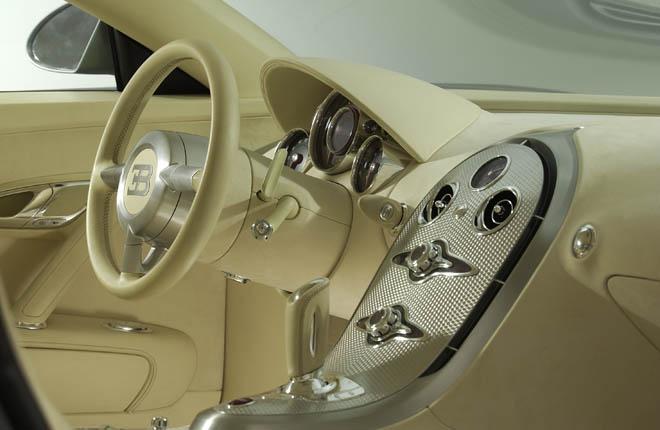 Bugatti Veyron 16.4 (36)