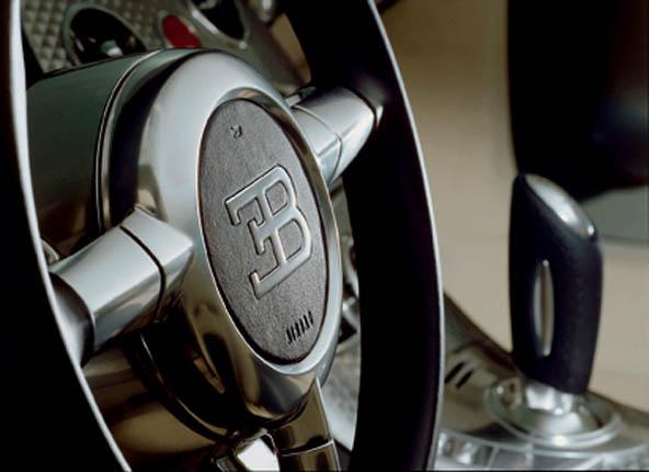 Bugatti Veyron 16.4 (34)