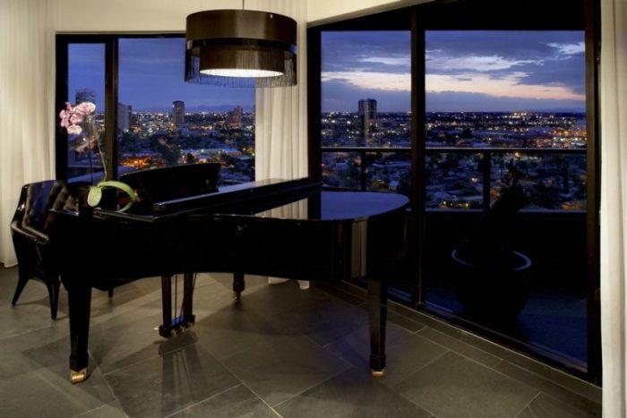 Amazing Luxury Penthouse in Phoenix (7)