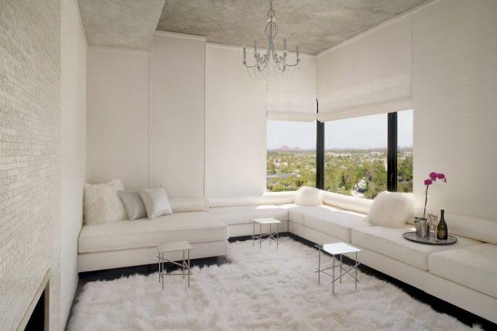 Amazing Luxury Penthouse in Phoenix (9)