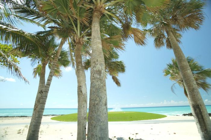 The Luxury Cap Cana Estate Dominican Republic (3)