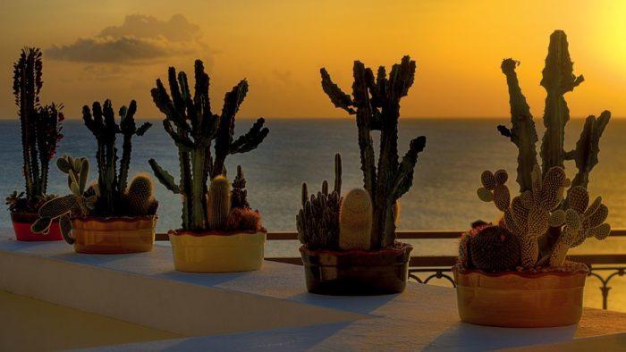 The Exciting La Samanna Resort, St. Martin (9)