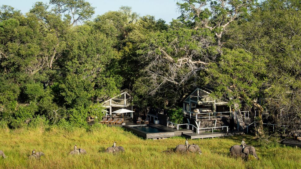 Africa's Abu Camp Guarantees Memorable Vacations (20)