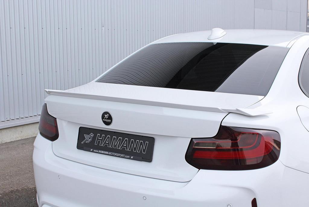 Hamann x BMW M2 Package 7
