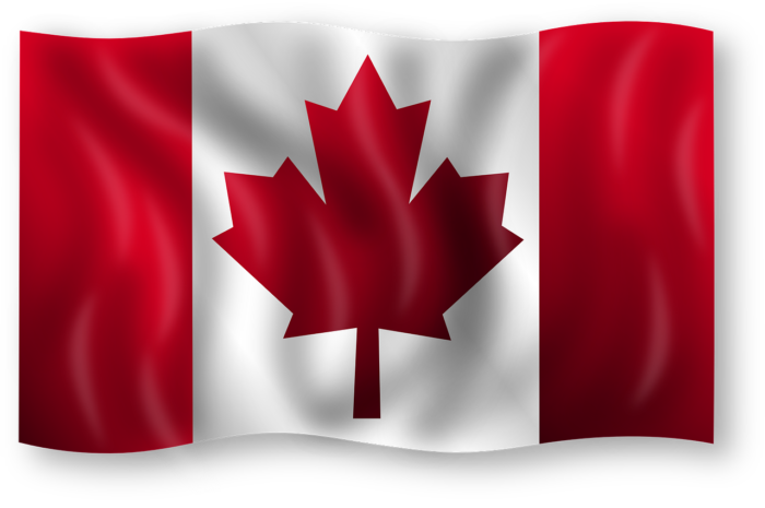 How Canadians Can Start A Business In The USA