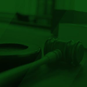 litigation support services chicago illinois