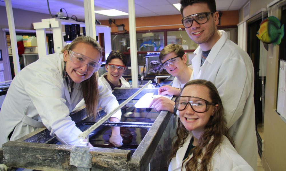 Inspired Students Take Hormones and Algae to a Whole New Level in the Lexus Eco Challenge