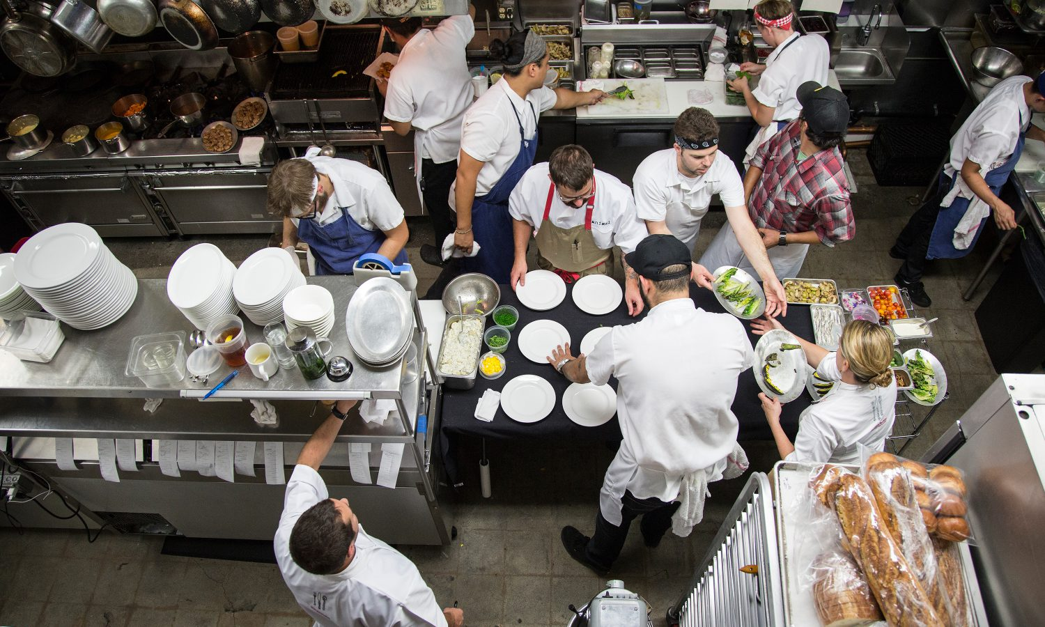 Lexus Chefs Serve the Food of Life and Love