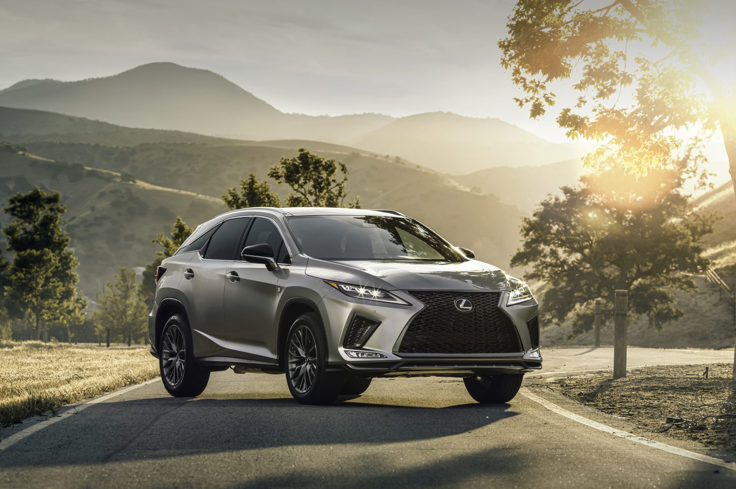 The Original Luxury Crossover: 2020 Lexus RX and RXL Deliver