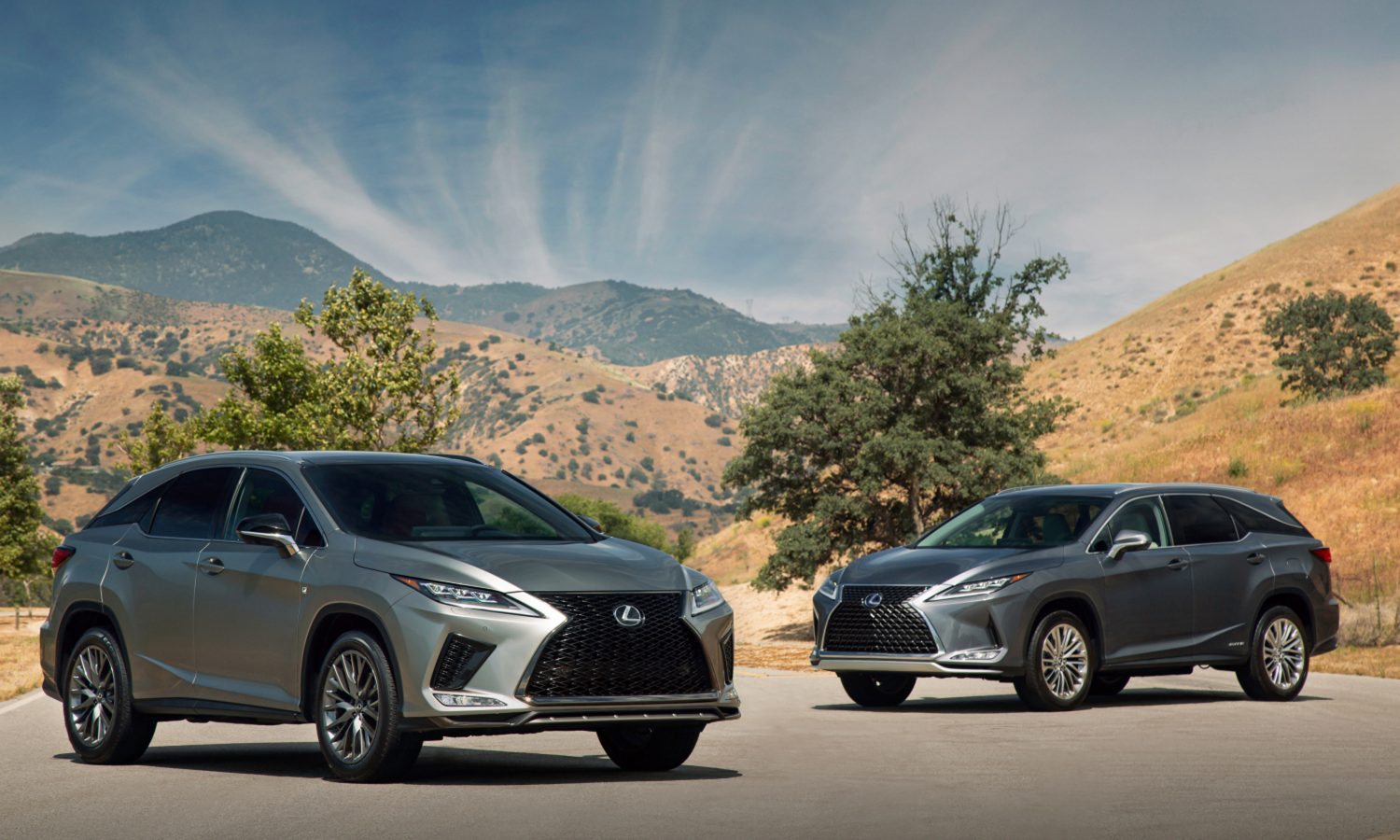 2020 Lexus RX and RXL Open a New Chapter for the Iconic