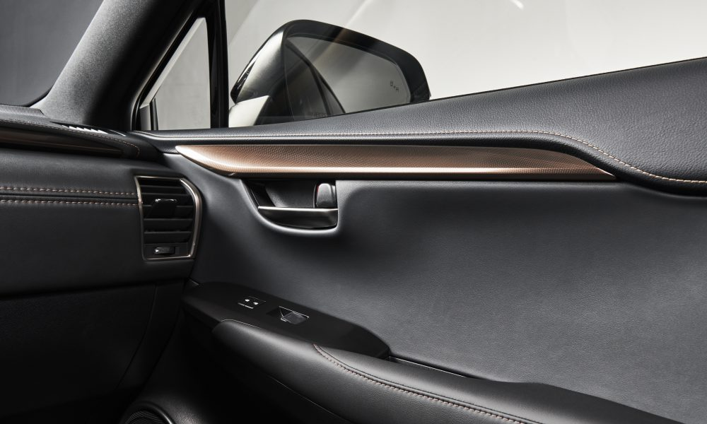 2020 Lexus NX Black Line Door Trim