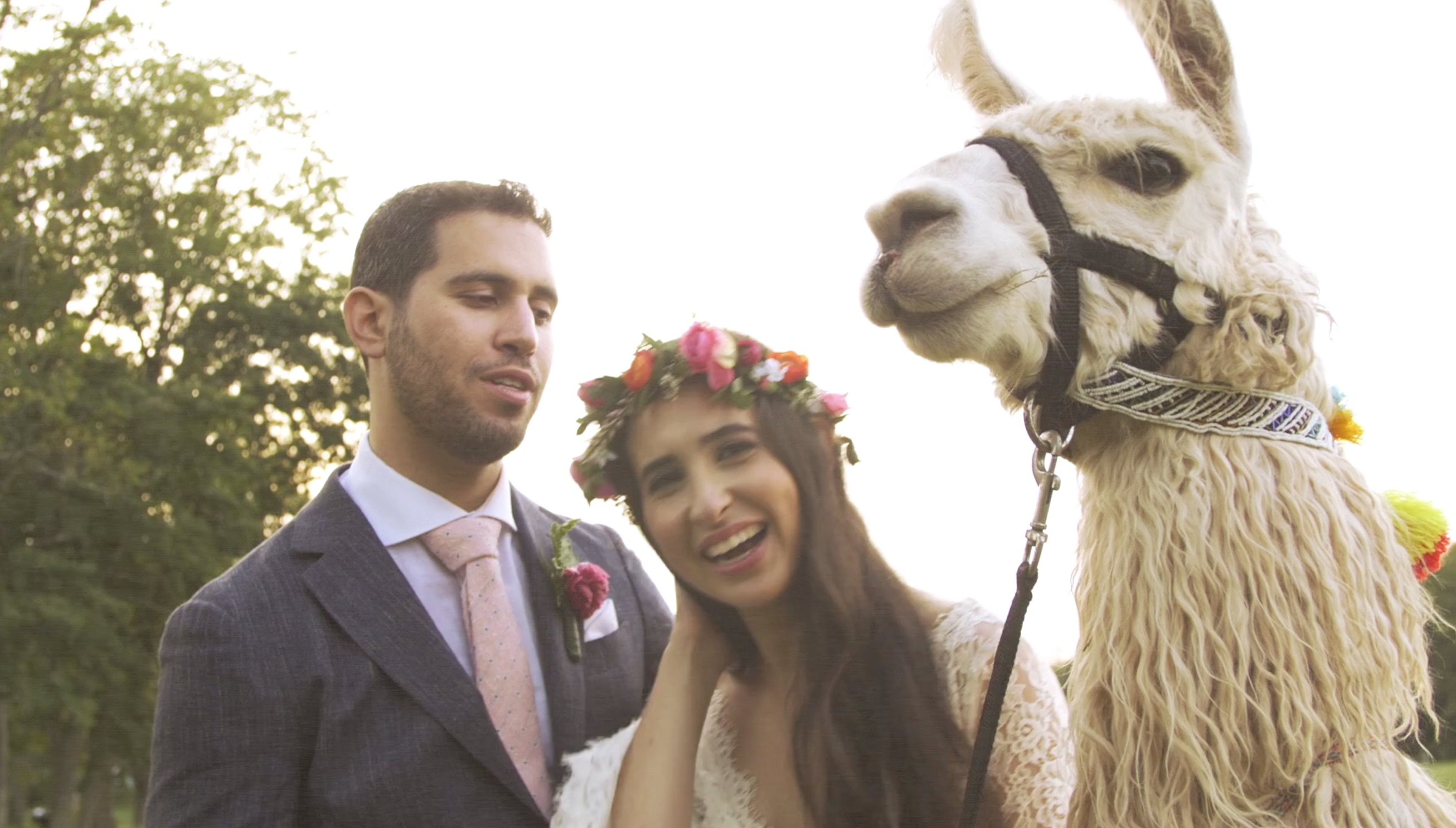 This Llama Farm Wedding Is The Happiest Thing You'll Ever See