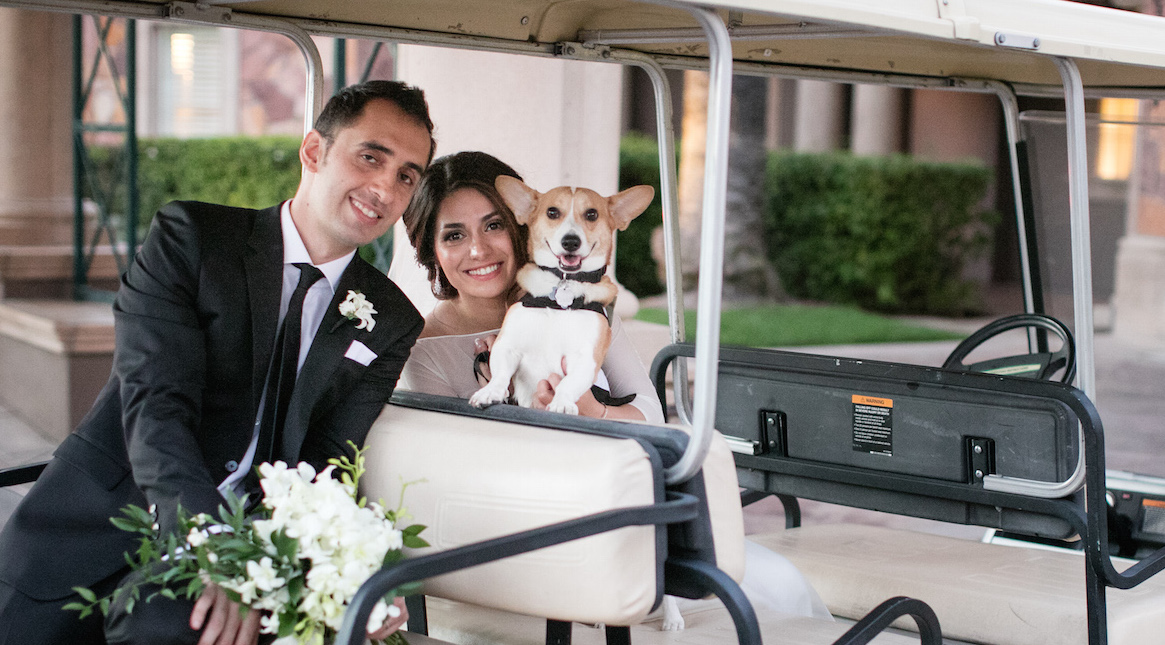 6 Things to Know Before Inviting Your Dog to Your Wedding