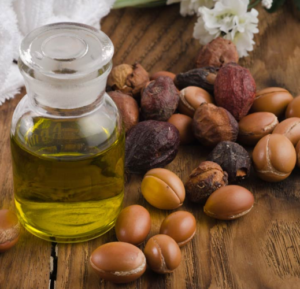 argan oil from moroccan fruit