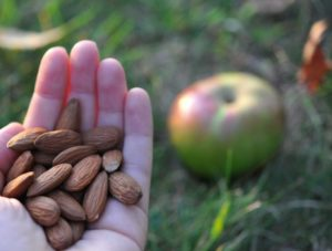 A handful of almonds can go a long way towards a healthier you.
