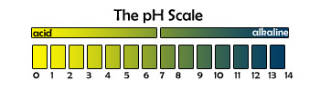 The pH scale indicates whether something is acidic or alkaline based.