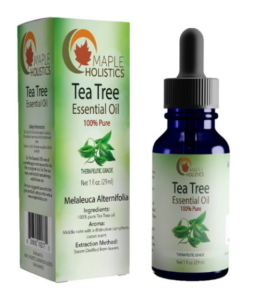 Maple Holistics Pure Natural Tea Tree Essential Oil