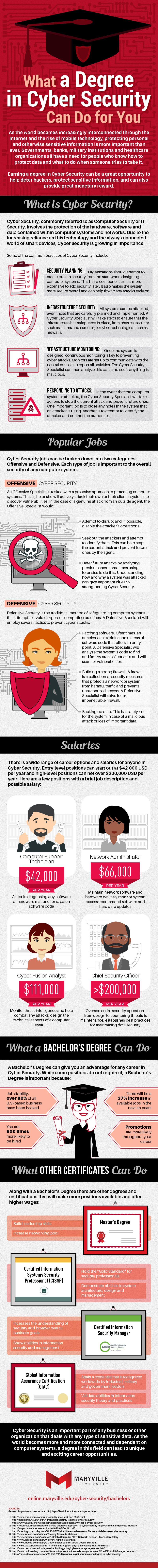 What a Degree in Cyber Security Can Do for You Infographic