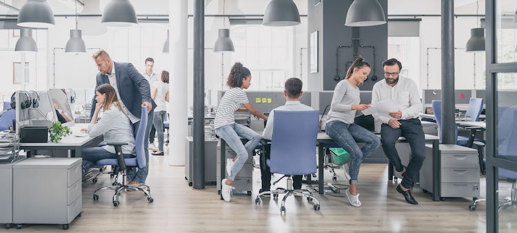 A group of business professionals works in a shared office space setting.