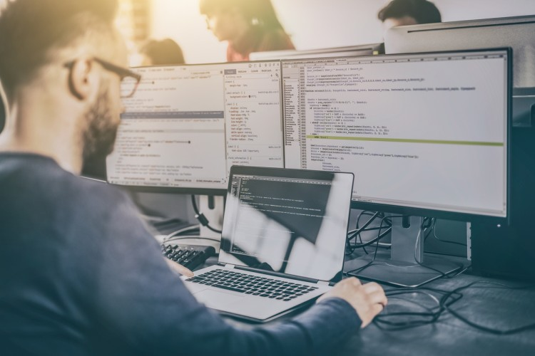 Guide To Programming Languages For Software Developers