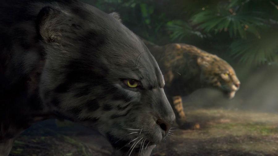 bbc_rio_olympics_jaguars