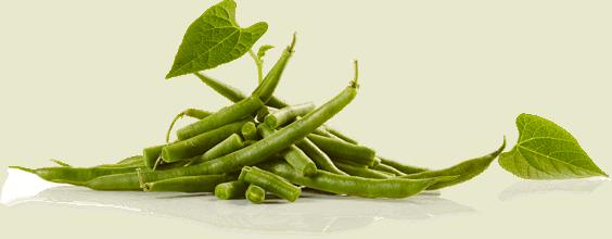stilllife_beans_angle_1