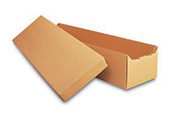 Cardboard Alternative Cremation Containers