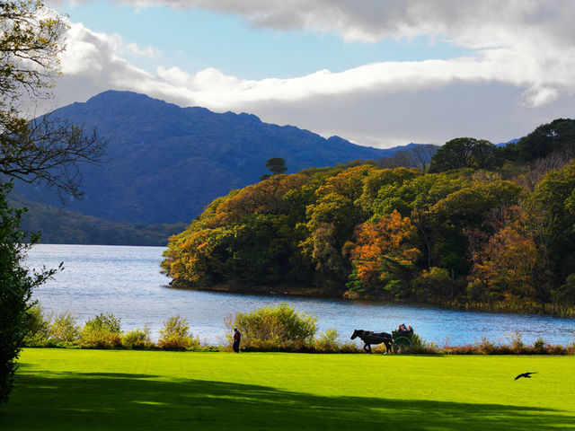 Killarney National Park by photographer Chris Hill via Ireland's Content Pool