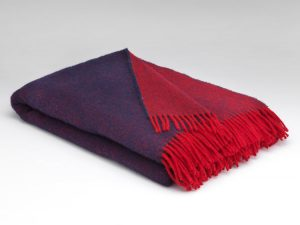 Mcnutt Navy Red Reversible Blanket