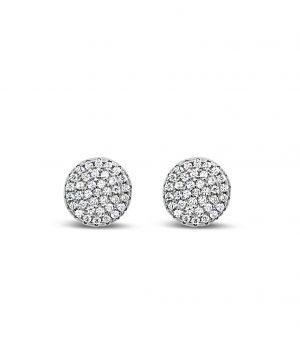 Absolute Sterling Silver Earrings se102sl