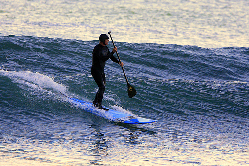 Stand-up paddleboard surfer. Credit: Mike Baird