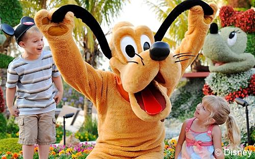 Disneyland Walt Disney World discount tickets