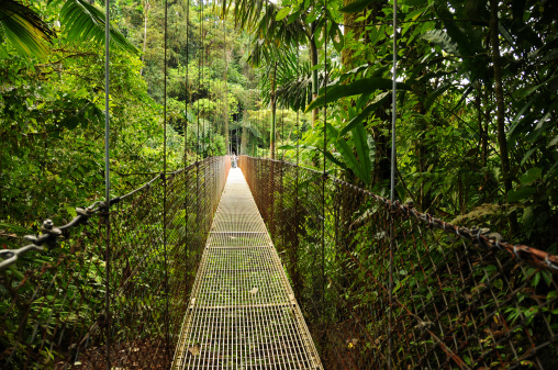 Brace yourself: The hanging bridges in Costa Rica's Arenal National Park are not for the timid. Photo: iStockphoto