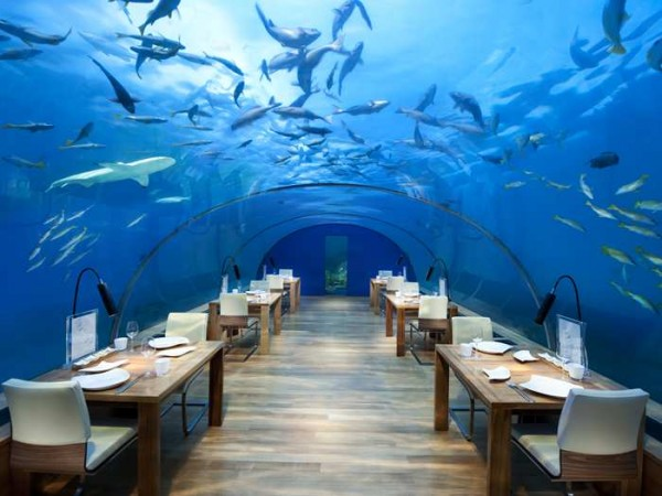 Ithaa Undersea Restaurant. Courtesy of conradhotels.hilton.com