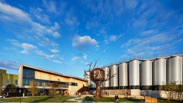 Dogfish Brewery's tree house