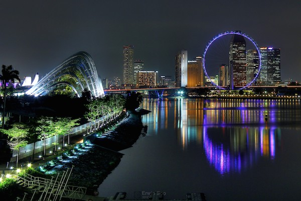 Singapore Flyer. Wikimedia Commons.
