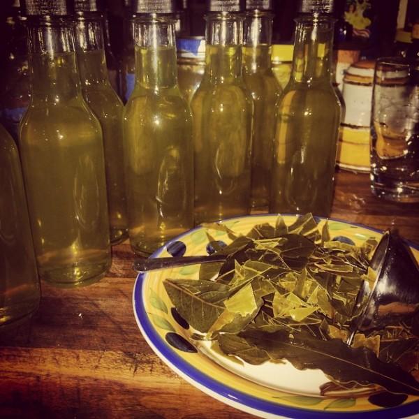 Italian liqueur- Alloro