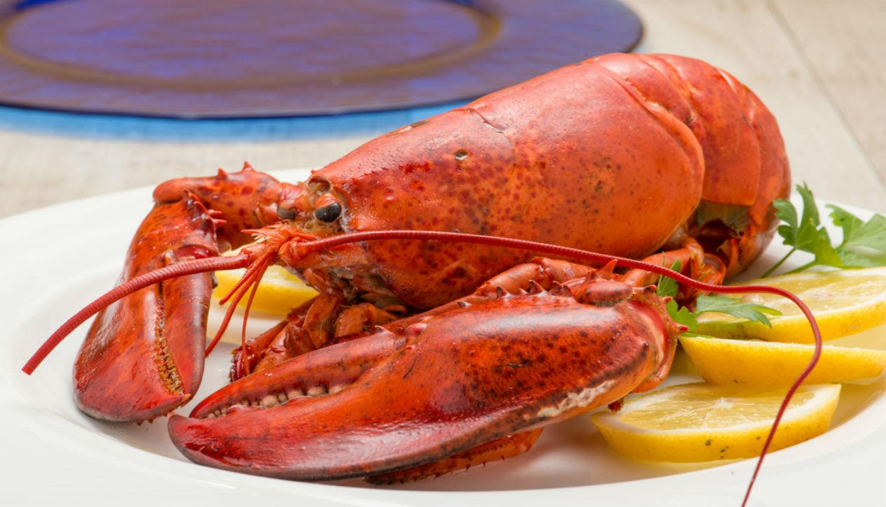 Florida lobster season