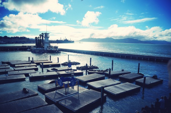 San Francisco- Pier 39