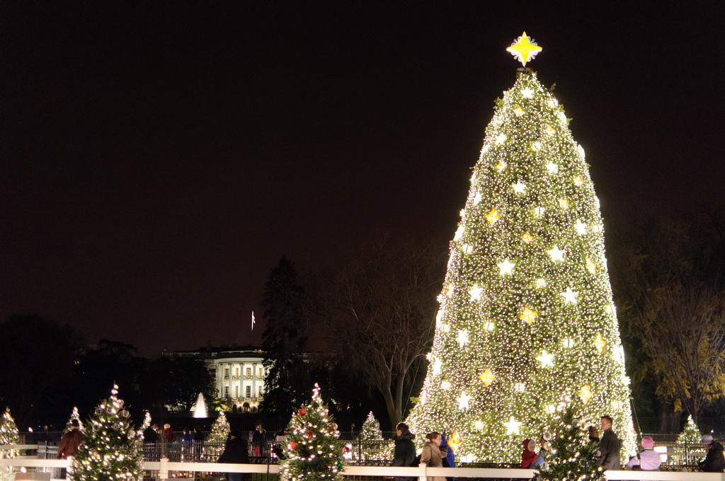 the national christmas tree in washington dc - Washington Dc Christmas Tree