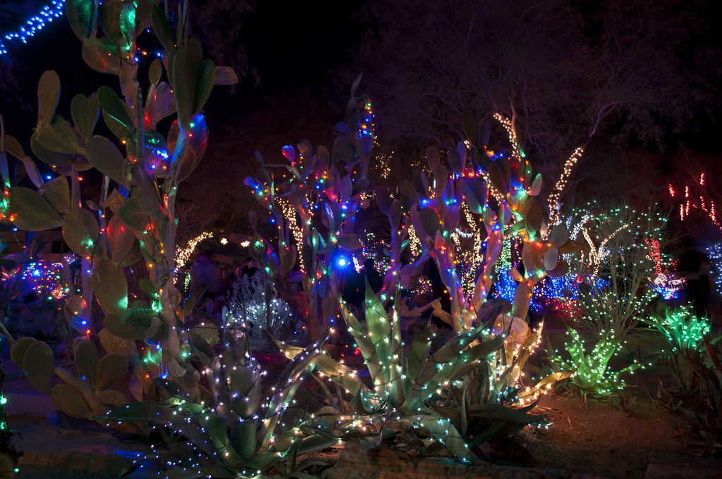 15 holiday things you can only do in las vegas orbitz - Decorating Cactus For Christmas