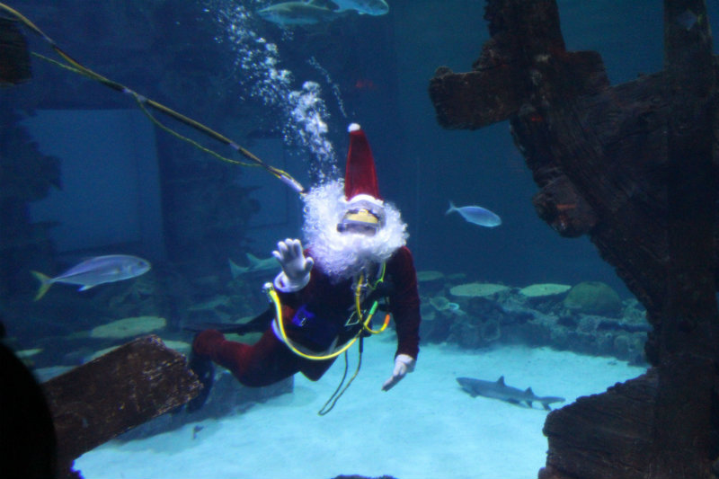 Scuba Santa at the Bellagio, Las Vegas