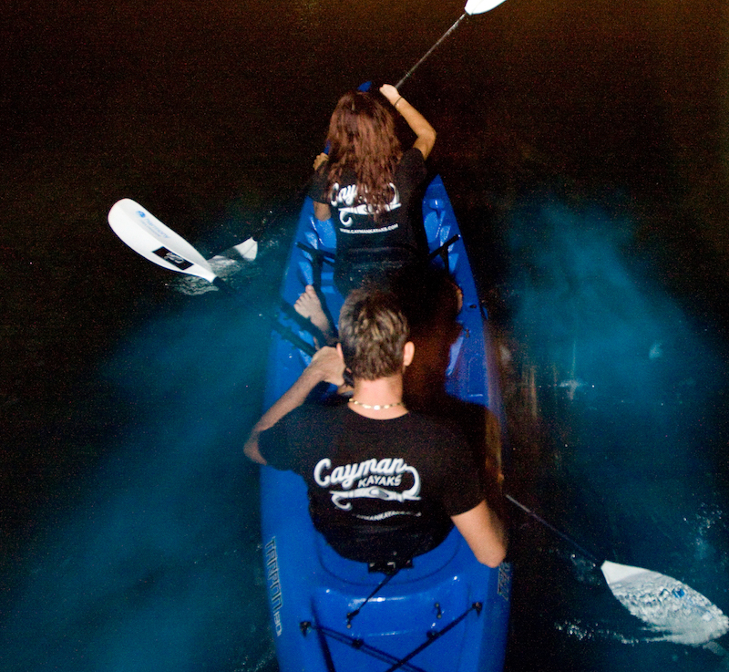 Bioluminescence Kayak Tour, Cayman Islands