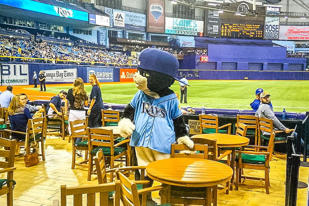 Orbitz-Baseball opening day-quirkiest baseball mascots of all time-Tampa Bay Rays-DJ Kitty-Flickr
