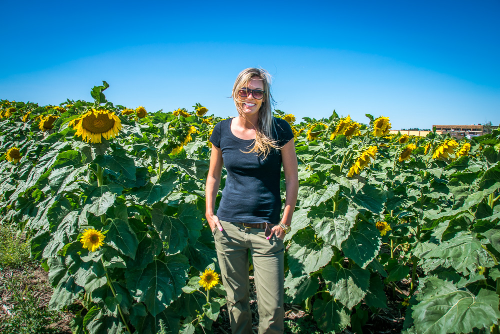 A Portrait in a sunflower field with the sun coming from the side - Photo by Author